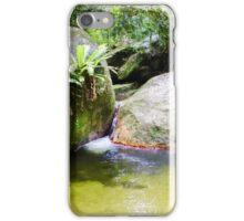 Rainforest Pond iPhone Case/Skin
