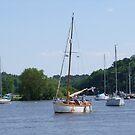 Wooden sailing boat at Foleux by Alan Gillam
