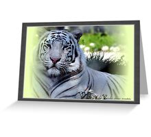 """White Tiger 4"" Greeting Card"