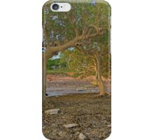 roebuck bay mangroves  iPhone Case/Skin
