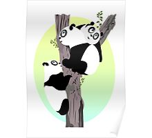 Pandas in a tree Poster