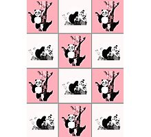 Pandas Checker - Pink Photographic Print