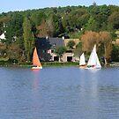 Foleux regatta by Alan Gillam