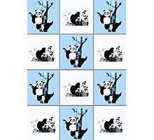 Pandas Checker - Blue Photographic Print