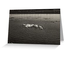 TOGETHERNESS Greeting Card
