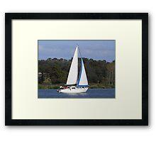 Bi Loup in the Foleux regatta Framed Print