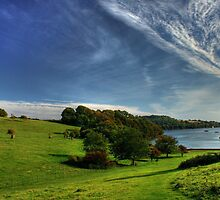 Trelissick 2 by DMitchell