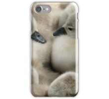 Cygnets on the nest iPhone Case/Skin