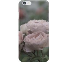 Bouquet of pale pink roses iPhone Case/Skin