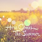 Here comes the Summer  by Nicola  Pearson