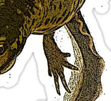 smooth newt Sticker