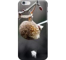 Entangled Sycamore Ball iPhone Case/Skin