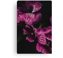 Belle Flowe Canvas Print