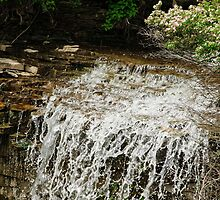 Borer Falls - Hamilton, ONT by Tracey  Dryka