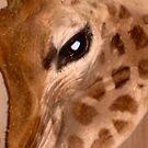 Baby Giraffe by BevsDigitalArt