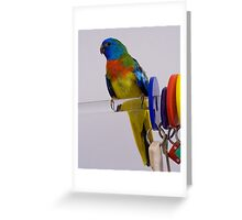 Chico II Greeting Card