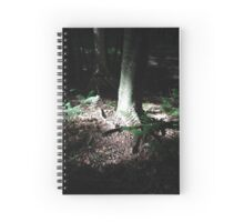 Forest Painting Spiral Notebook