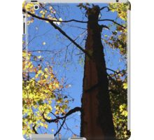 Tree Stripped By Lightning  iPad Case/Skin