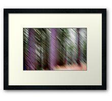 Forrest Framed Print