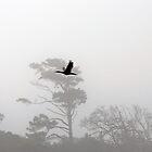 Bird flight and tree line by Darren Bailey LRPS