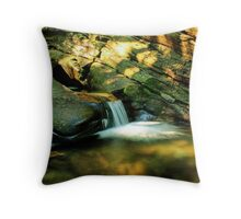 Overflow (version II) Throw Pillow