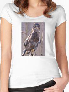 Broken Wing Women's Fitted Scoop T-Shirt