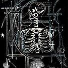 Skeletal Signals by Lisa Stead