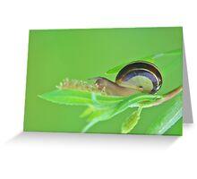 Snail Logic Greeting Card
