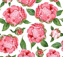 Watercolor Peonies by Alena Tselesh