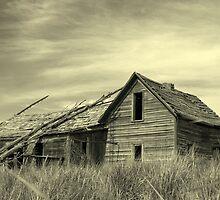 Homestead by Larry  Stewart