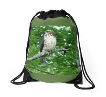 Young Red-Tailed Hawk Drawstring Bag