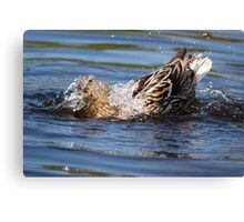 Cor! Its Wet Innit! Canvas Print