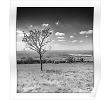 Dunstable Downs Poster