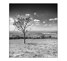 Dunstable Downs Photographic Print