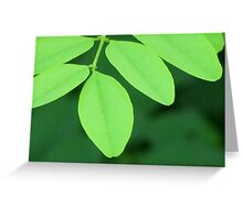 Pleasantly Green Greeting Card