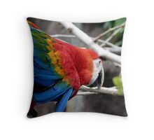 Brightly coloured bird Throw Pillow