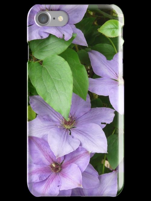 Purple Clematis by artgoddess