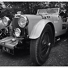 Aston Martin Le Mans 1933 by Mark Wilson