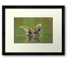 Stretching Out  Framed Print