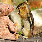 Jasper Teaching Bear To Play Hide-n-Seek by Betsy  Seeton