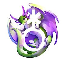 Genderqueer Pride Dragon Photographic Print