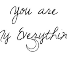 Ariana Grande - My Everything Sticker
