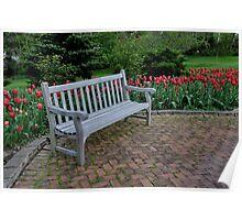 a bench among tulips Poster
