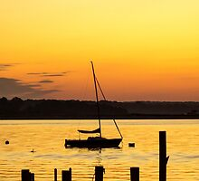 Summer Silhouette by JoeGeraci