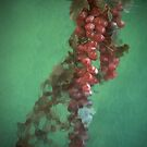 Grapes Behind Glass by WTBird