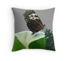 Butterfly in Black and Orange Throw Pillow