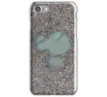DCA Hidden Mickey iPhone Case/Skin