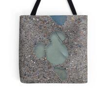DCA Hidden Mickey Tote Bag