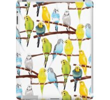 Budgie pattern iPad Case/Skin