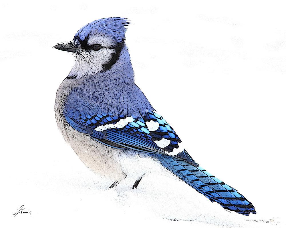 Uplifting Blue by DigitallyStill